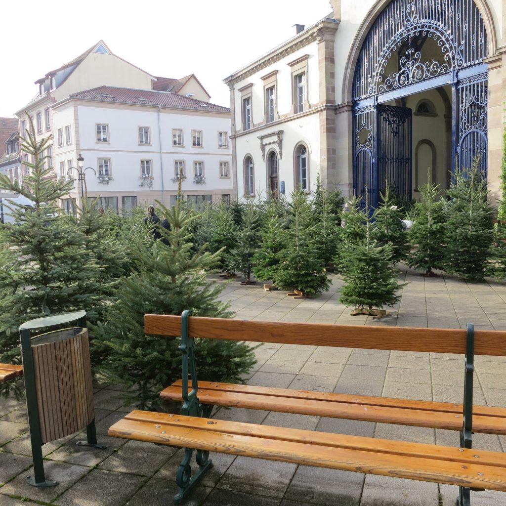 Weihnachtsbaumverkauf in Frankreich