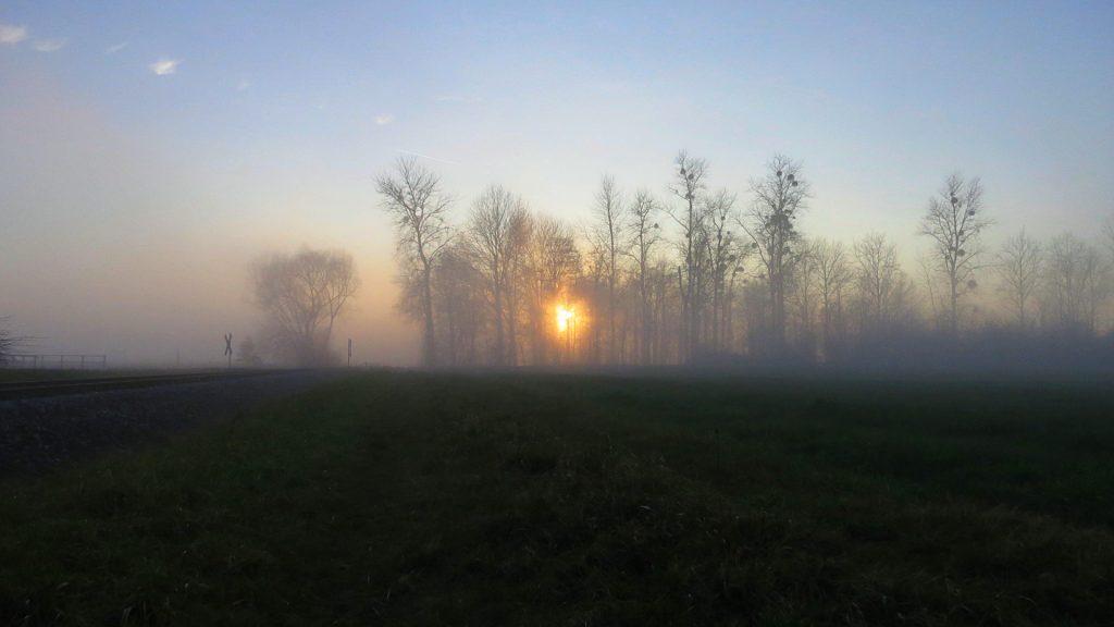 2014-01-12_Stollhofen_03