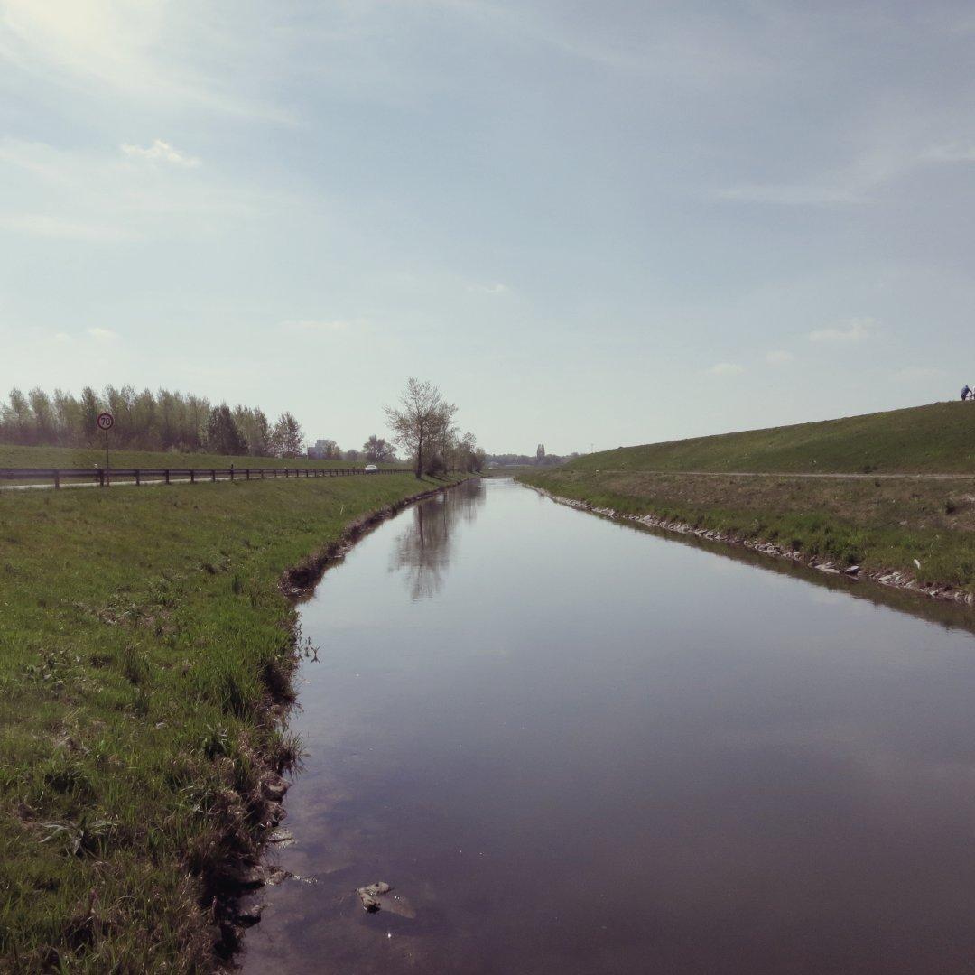Der Rhein bei Stollhofen