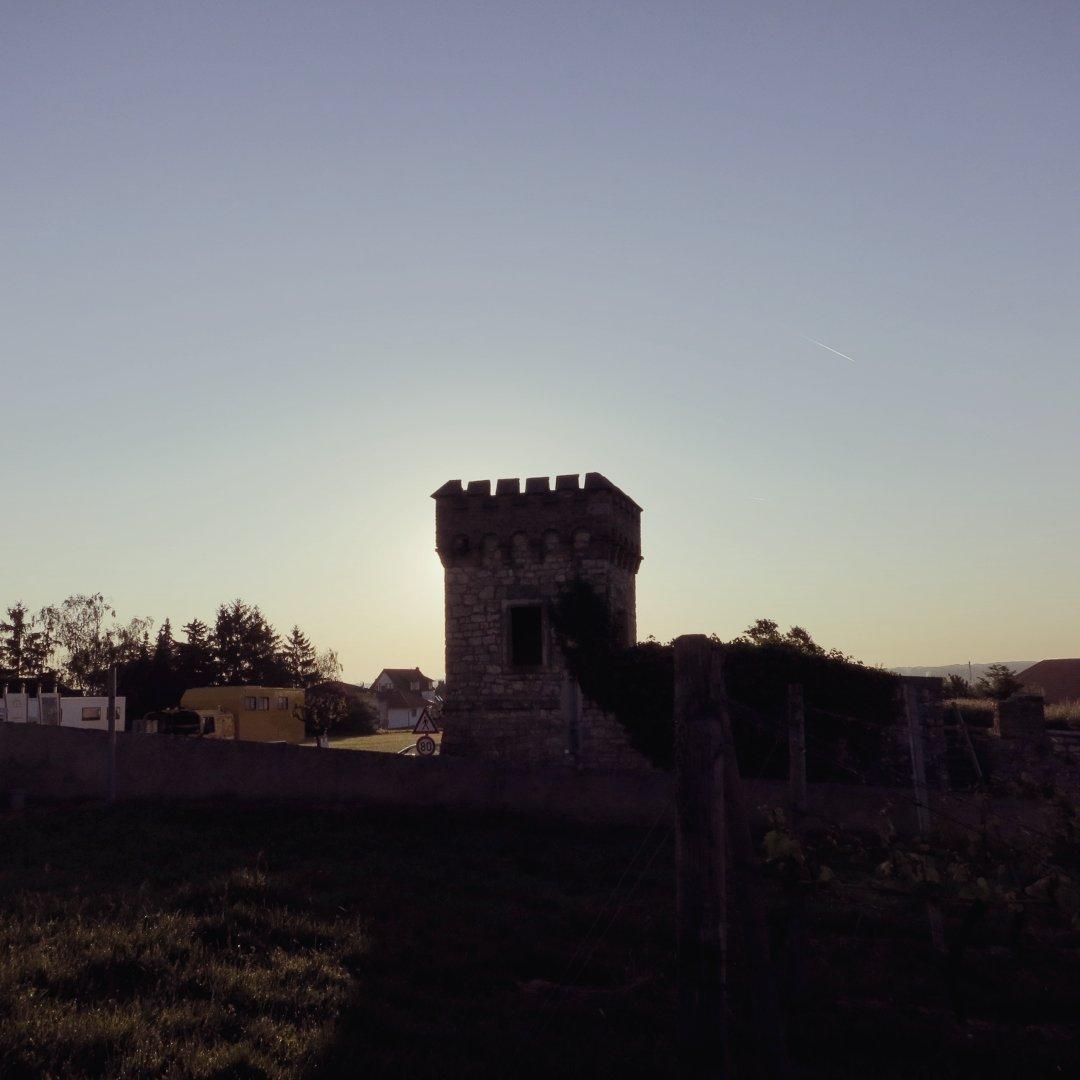 Stadtmauer im Gegenlicht