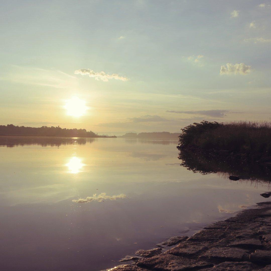 Gestern Morgen am Rhein