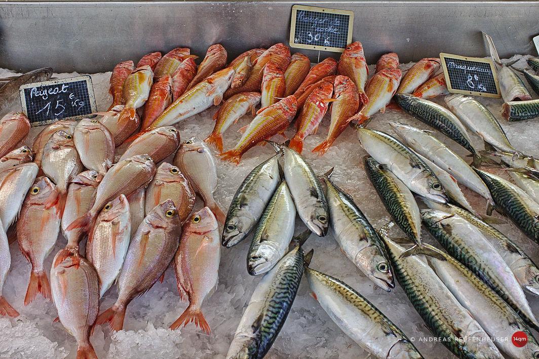 Carro Fischmarkt