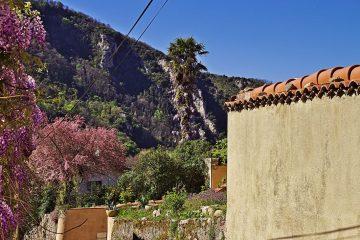 13a Blütenpracht in Foix