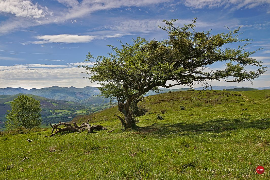 Zurück in die Pyrenäen