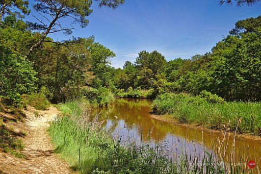 08a Radtour am Kanal zwischen Capbreton und Labenne