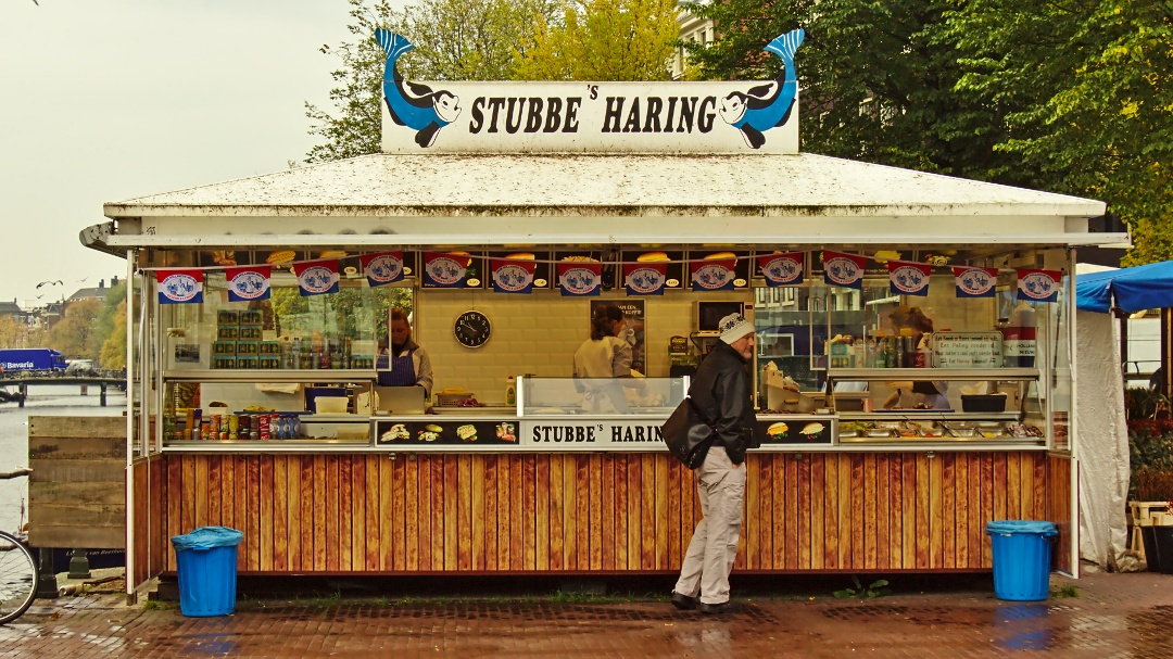 Stubbes Haring