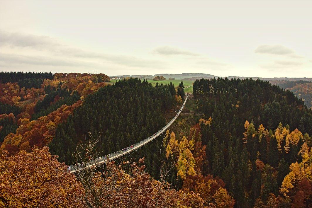 Geierlay Hängebrücke