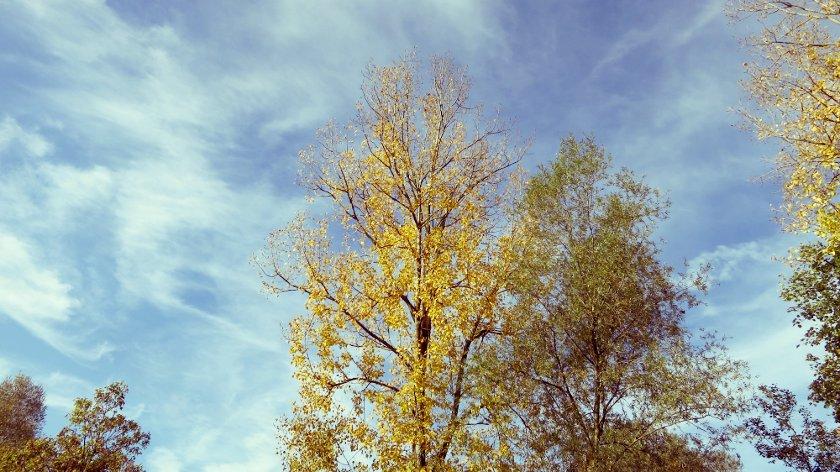 Unterwegs im Herbst