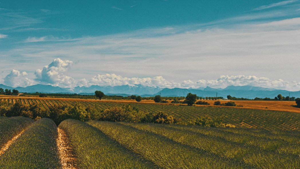 Provence-Alpes-Cote-d'Azur
