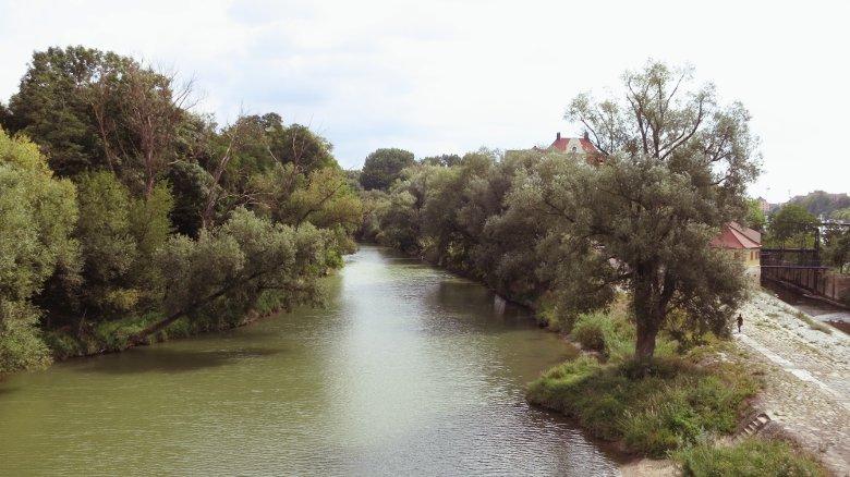 Zwischen den Donauinseln